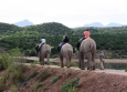 Elephant riding on the Garden Route